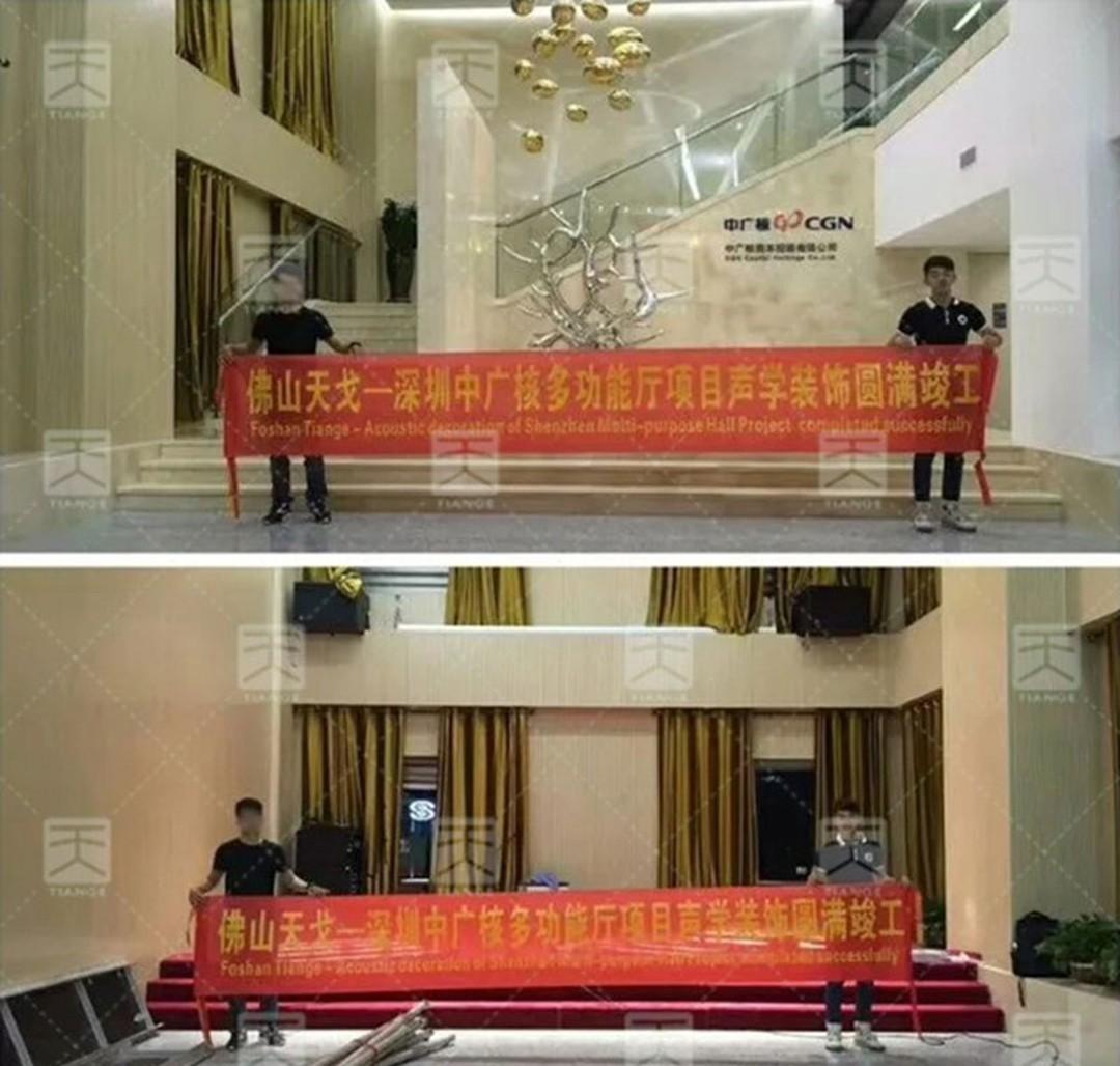 深圳中广核多功能厅