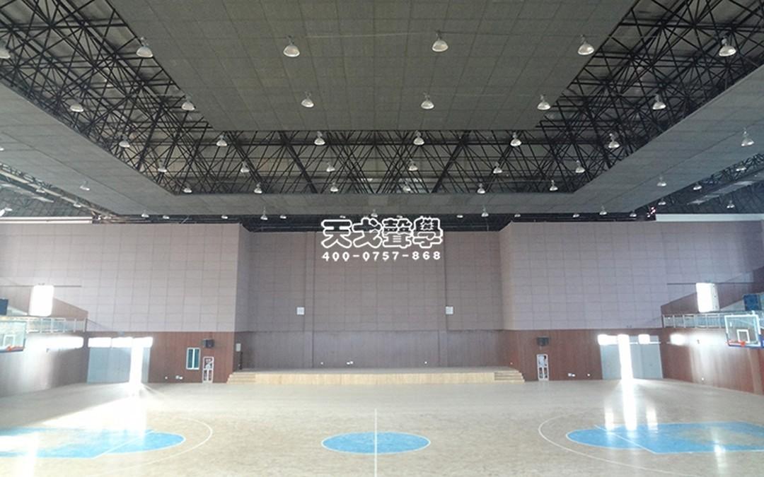 广东佛山丹灶金沙中学体育馆
